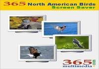 365 North American Birds Screen Saver