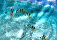 Watery Desktop 3D Screensaver pour mac
