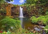 Nature Reserve Screensaver pour mac