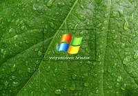 Free Windows Vista Screensaver pour mac