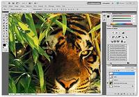 Adobe Photoshop CS6 pour mac