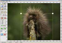 Image Cut split image pour mac
