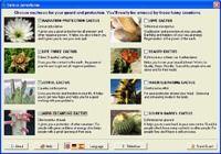 Cactus Emulator pour mac