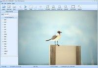 Free File Opener pour mac