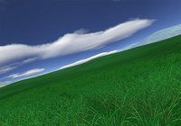 Green Fields 3D screensaver