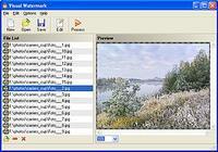 Visual Watermark pour mac