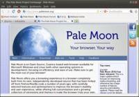 Pale Moon Linux pour mac