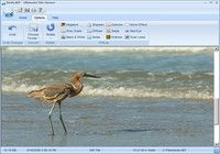 Ultimate File Viewer pour mac
