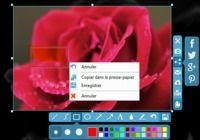 Apowersoft Capture d'écran gratuit